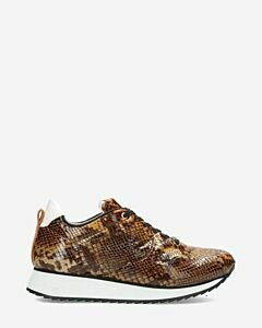 Sneaker-with-brown-snake-print-