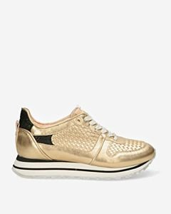 Sneaker-50th-anniversary-gold