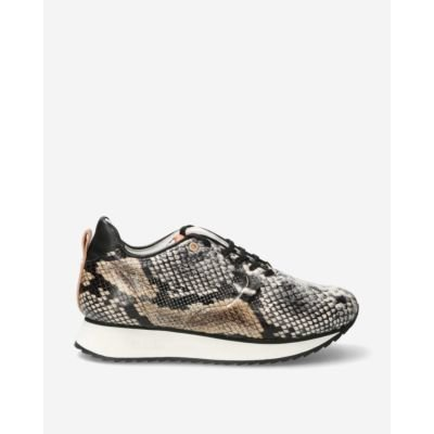 Sneaker-with-taupe-snake-print-